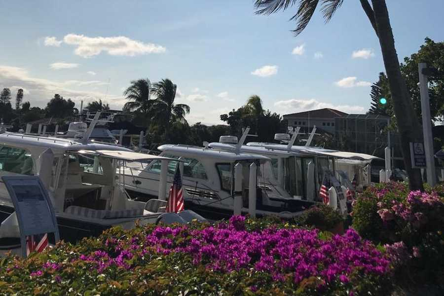 2018 FLORIDE NO 73