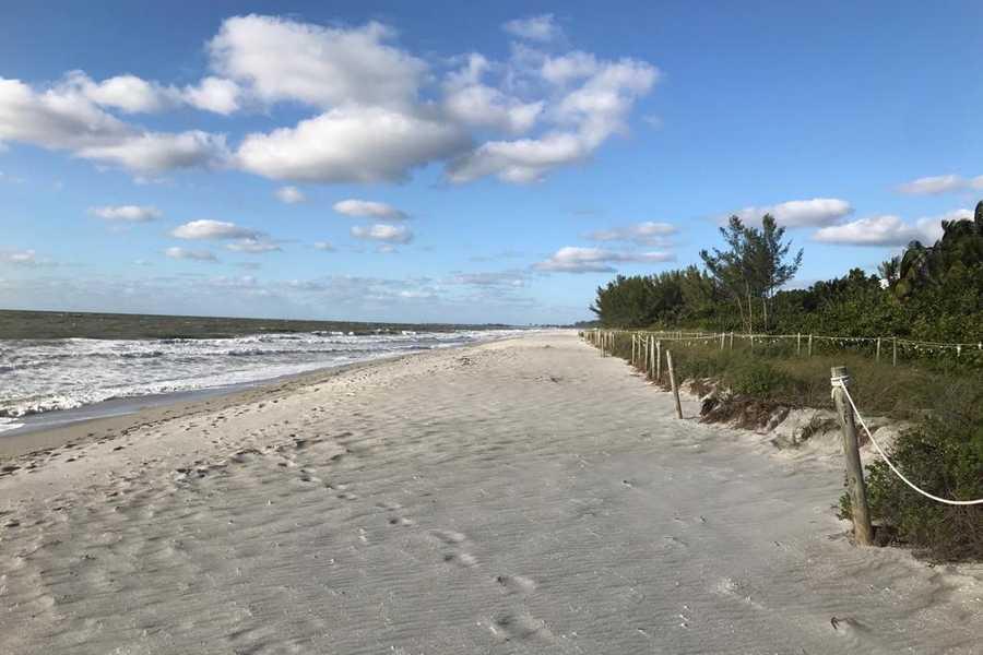 2018 FLORIDE NO 88